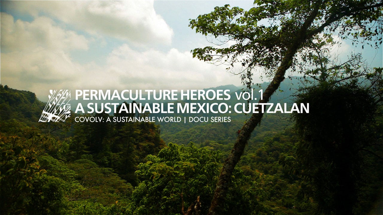 COVOLV: Permaculture Heroes Vol.1