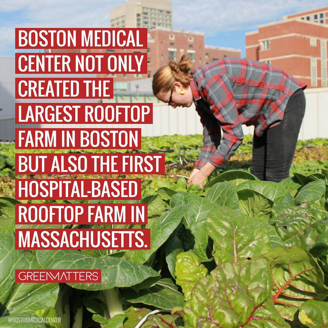 The 7,000 square foot farm hopes to generate 15,000 pounts of food every season…