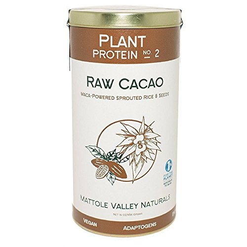 Raw Cacao Plant Protein – Vegan Protein – Organic Biofermented + Raw Sprouted Brown Rice – Contains All Essential Amino Acids (no. 2, raw cacao)