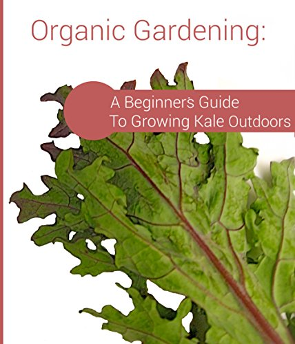 Organic Gardening: A Beginner's Guide To Growing Kale Outdoors