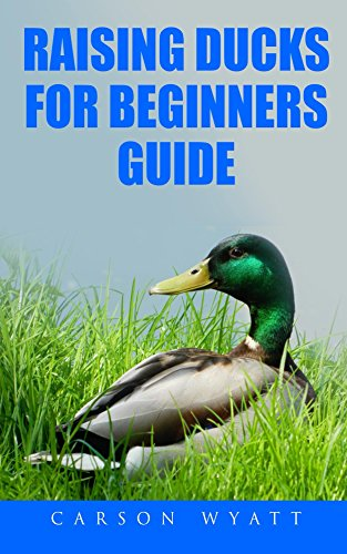 Raising Ducks for Beginners Guide: Perfect Poultry for Backyard Keeping (Homesteading Freedom)