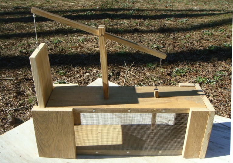 How to Build Your Own Small Animal Trap